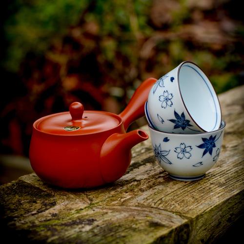 kyusu japanese tea pot